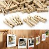 Timber Clothes Pegs (24)